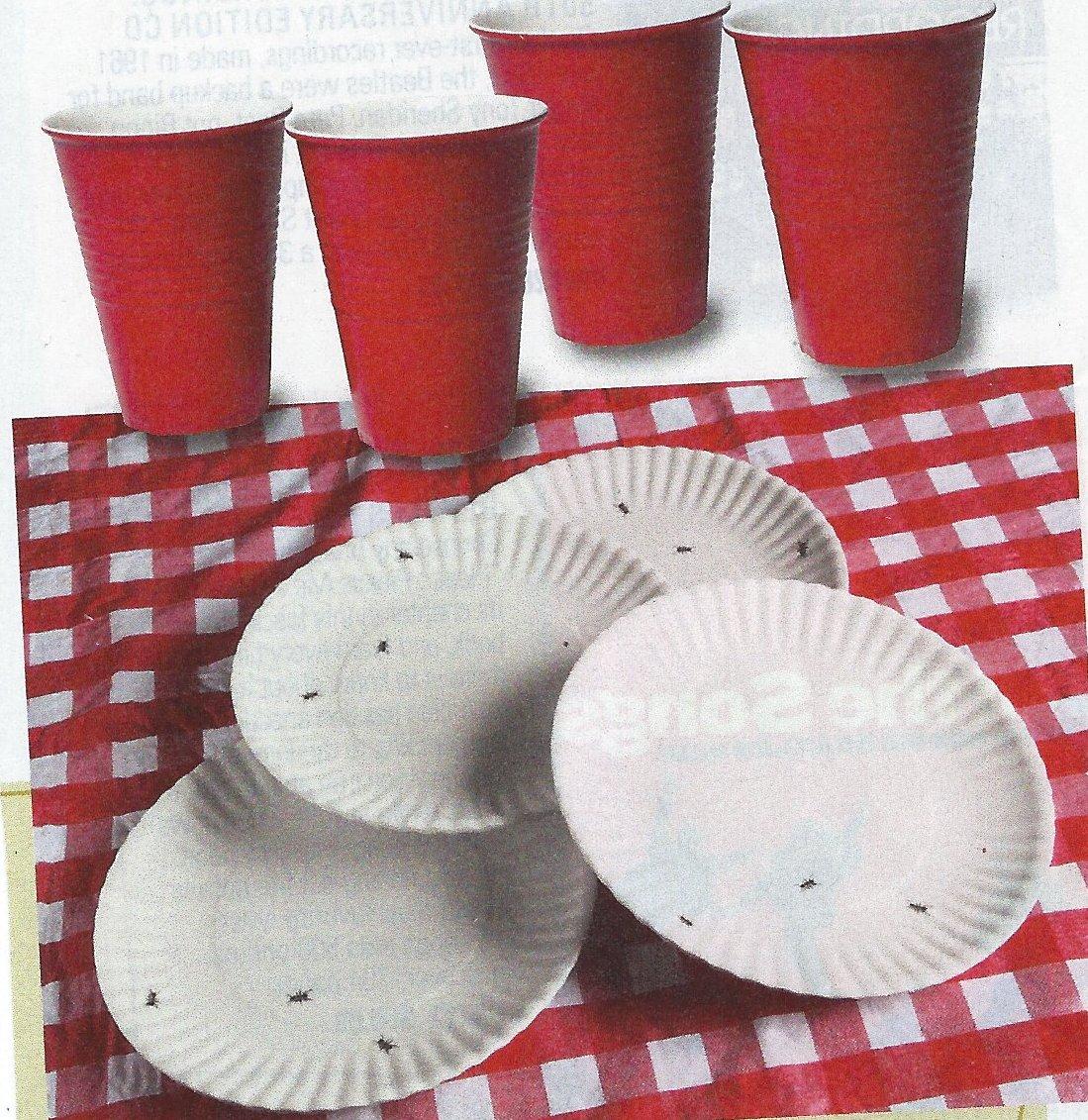 picnicStuff
